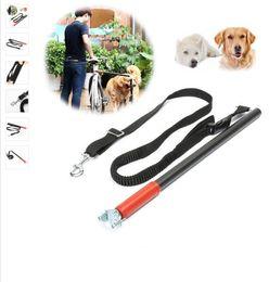 Wholesale Walk Bike - New Arrival Nylon Dog Bicycle Traction Belt Rope Bike Attachment Pets Leash Distance Keeper Hands Free Pet Walk Run Jogging Lead