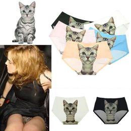 Wholesale Newest Women Underwear - 11colours Newest Ladies Underwear 2015 Cute 3D Cat Panties Sexy Mid Waist Underwear Comfort Briefs Animal Panties For Women Nylon Panties