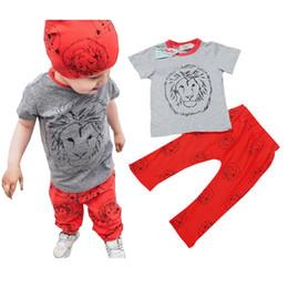 Wholesale Toddler Girls Turtlenecks - Summer Infant Toddler Baby Cotton Lion Printing Short Shirts+ Pants Boys Girls Tops Tees+ Harem Trousers Suits Children Kids Clothing Sets