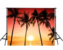 superbes images photographiques Promotion Palm Trees Sunset Beach Photographie arrière-plan Beautiful Red Sky Nightfall Scenery Summer Holiday Wedding Photo Backdrops Scenic Wallpaper