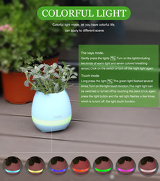Wholesale Wholesale Piano Music Box - Musical Flowerpot Smart Touch Music Plant Lamp Rechargeable Wireless Play Piano on a Real Plant Musical Boxes Bluetooth Speaker Night Light
