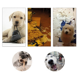 Wholesale Dog Plush Cotton Rope - Cartoon Soft corduroy Fleece Dog Sound Toy Cotton Rope Puppy Chew Toys Dog Toys Pet Puppy Chew Squeaker Squeaky Plush Sound