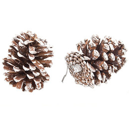 Wholesale Wholesale Real Tree - 9 Real Natural Small Pine cones for Christmas Craft Decorations White Paint E00341 BARD