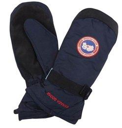 Wholesale Velvet Hat Gloves - gloves for women and men Big Flower women&men rabbit goose Gloves For Women finger less Female Mittens Black gloves Free Shipping