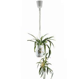 Wholesale Grow Light 15 - Ordinary LED plant pendant light for grow flowers smart light restaurant droplight plant decorative lamp