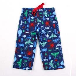 Wholesale Dragonfly Wind - Spring and summer leisure trousers boy children wind animal pattern spider Dragonfly cockroach Mantis blue cotton lace edge comfort a riot o