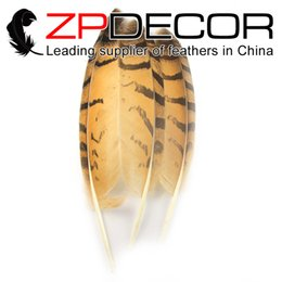 vrai hibou Promotion ZPDECOR 30-35 (12-14 po) 50pieces / lot Real Natural Beautiful Owl Eagle Plumes pour la décoration Art Design et DIY