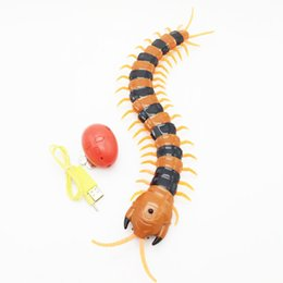 Wholesale Infrared Radio Control Toys - Wholesale-Funny Gadgets Radio Infrared Remote Control Machine Bionic Centipede prank Novelty Gag Toy Scary Halloween decoration Party