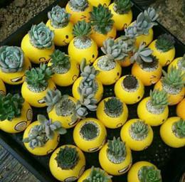 ceramica decorazione giardino Sconti Cartoon Expression Emoji Fleshy Flowerpot Manuale Decalcomanie Ceramica Mini Garden Pots Multi Function Garden Decoration IC694
