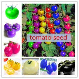 Wholesale Rainbow Rare - 100pcs bag rainbow tomato seeds, rare tomato seeds, bonsai organic vegetable & fruit seeds,potted plant for home &garden