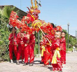 Wholesale Chinese Silk Costume - children size red silk print fabric CHINESE Kid DRAGON DANCE Folk Festival Celebration Costume dragon mascot costume