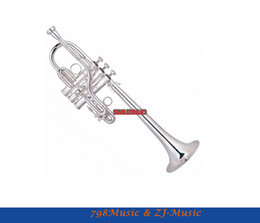 Wholesale Bb Bears - Wholesale- Professional New Silver Plated Eb D Trumpet Valves With Case Bore suze 11.6mm,Bell DAI.120mm