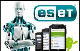 Wholesale Software For Android - Hot Sale Website genuine ESET Mobile Security android NOD32 Mobile version of antivirus software for 1year 3 year