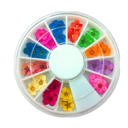 Wholesale Dry Flower Wheel - Wholesale- 1Set 3D Flower Nail Art Dried Dry Flower Nail Art Wheel Decoration Manicure Tips Nail Art Products Beauty Tools Hot Selling