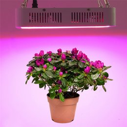 Wholesale Epistar Led Red - Full Spectrum 400W LED Grow lights IR UV lamp plant lights Epistar smd5730 chip 400Leds high brightness grow light AC85-265V greenhouse lamp