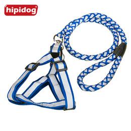 Wholesale Pet Leash Reflective - Hipidog Step-in Adjustable Reflective Nylon Noctilucent Small Large Dog Pet Harness Leash Lead Set Safety for Walking Jogging