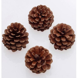 Wholesale Wooden Stand Christmas Decorations - Christmas Decoration Natural Big Pinecone Christmas Wedding DIY DecorationZR-6-1