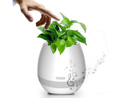 Noite de panela luz on-line-TOKQI bluetooth Inteligente Música vasos de Flores inteligente planta real toque tocar flowerpot colorido luz longo tempo jogar baixo falante luz Da Noite