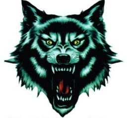 Wholesale Wolf Car Vinyl - Automobile motorcycle electric car decorative sticker tiger leopard Wolf skeleton fire shade scratch car stickers wholesale