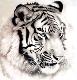 Wholesale Painting Tigers - Diamond mosaic full square diamond embroidery needlework animal white tiger diy diamond painting cross stitch kits Mosaic Home Decor zf0110