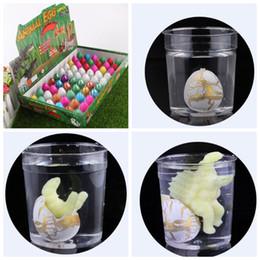 2019 электрическое крыло rc 60 шт./лот магия воды штриховка инфляция растет яйца динозавров практическая шутка игрушка для детей подарок образовательных новинка кляп игрушки