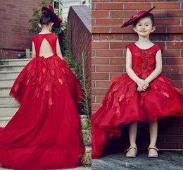 Wholesale Hi Low Rhinestone Dresses - 2017 Flower Girl Dresses Jewel Neck Short Sleeve Lace Applique Hi-Low Back Hole Appliqued Tulle First Pageant Christening Communion Gowns