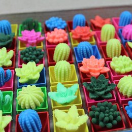 Wholesale Grow Large - 14 4ym Funny Large Colorful Cactus Toy Swelling Growing Plants In Water Amusing Cacti Creative Gifts Education Toys For Chirldren