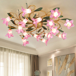 Argentina Nuevo diseño pastoral LED luces de techo francés romántico país americano clásico nórdico cálido hierro dormitorio principal sala de estar luces Suministro
