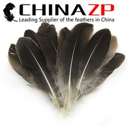 Wholesale Feather Carnival Costumes - Top Quality CHINAZP 15~20cm(6~8inch) 50Pcs lot Hand Select Natural Grey Goose Feather Plume Feather for Carnival Design