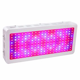 Wholesale Indoor Plant Lights - 2000W Double Chips LED Grow Light Full Spectrum 380-730nm Plant Grow Lamps For Indoor Plants and Flower Phrase with Very High Yield
