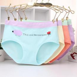 Calcinhas de algodão orgânico on-line-Bom A ++ [modelos Best-seller] impresso meninas underwear senhoras na cintura de algodão orgânico dos desenhos animados das mulheres cuecas NP063