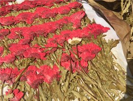 Wholesale Crystal Stems - Latest Red color Crystal Daisy On Stems dried pressed flower for Candle Decoration Party DIY Handmade Material 120pcs Free Shipment