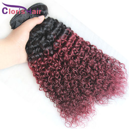 2020 lockiges rotes menschliches haar weben 1b 99j Malaysian Kinky Curly Hair Weave bündelt zwei getönte burgundische Ombre-Haarverlängerungen billig weinrot doppelt gezogen maschinenschuß günstig lockiges rotes menschliches haar weben
