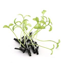 Antenas pequeñas online-Venta al por mayor 500 unids plantas de la novedad Lucky hierba pinzas para el cabello Headwear pequeño brote de la antena de frijol brote partido de la seta pin de pelo Hd3401 -1