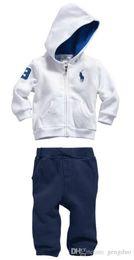 Wholesale Summer Outfits Sport Set - New Baby Boys Autumn Clothing Sets 2pcs Set Hoodies Sweatshirts+Pants Kids Sport suits Children Cotton Tracksuits Boy Casual Clothes Outfit