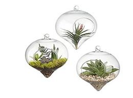 Wholesale Glass Terrariums - Glass Hanging Air Plant Terrarium Decorative Flower Pots Containers Fern Plant Container Vase