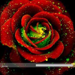 Wholesale Rose Bushes - wholesale50 Heirloom Big Blooming Red Green Rose Bush Flower Seedsbonsai plant garden