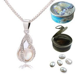 Wholesale Slide Mount - 925 Silver Screw Teardrop Pearl Cage Pendant Helix Cage Pendant Mounting For DIY Locket Necklace Lock In Oyster Pearl