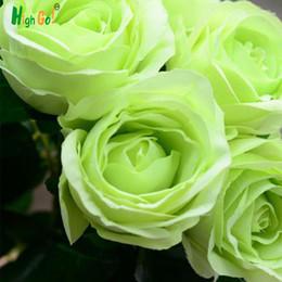 2019 piante di fiori del giardino arcobaleno 30 pz / borsa rare misto COLORI semi di rosa arcobaleno semi di rosa bonsai semi di fiori nero rosa rare balcone pianta per la casa giardino sconti piante di fiori del giardino arcobaleno