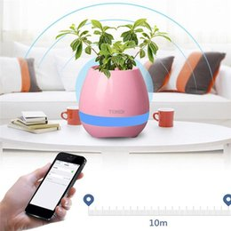 Wholesale Multi Touch Speaker - TOKQI Bluetooth Smart Touch Music Flowerpots With Bluetooth Speakers Plant Piano Music Playing K3 Wireless Flowerpot (whitout Plants)