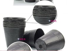 Wholesale Shipping Garden Supplies - orchid Free shipping,300pcs lot,8*8cm,thin plastic cup for nursery,flowerpot,mini Seedling pot,bonsai ,garden supplies,container plant or...