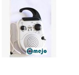 Argentina omejo 1080P Baño Radio Cámara DVR 32GB Suministro