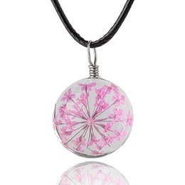 Wholesale Long Glass Flowers - Real Dandelion Jewelry Crystal Glass Ball Dandelion dry flower Necklace Long Strip Leather Chain Pendant Necklaces For Women