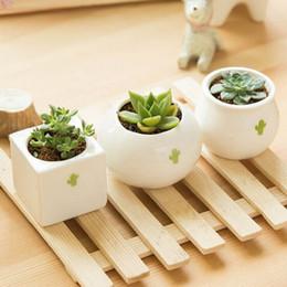 Wholesale Ceramic Vase Free Shipping - Free shipping 1PCS Gardening Mini ceramic Flower Pot Vase circular Bonsai Planter Nursery Seedling pot with&seed garden supplies