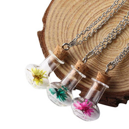 Wholesale Dried Flower Vases - Explosions listed vase dried flower necklace pendant series women's drift bottle wish bottle WFN295 (with chain) mix order 20 pieces a lot