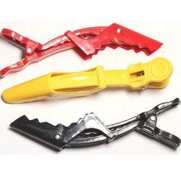 Wholesale Wholesale Hair Crocodile Clips - Beak Sectioning Clips Crocodile Hairdressing Salon Clamps Hair Grip