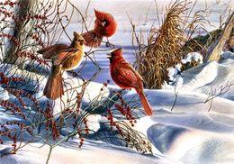 Wholesale canvas bird paintings - Diamond mosaic full round diamond embroidery needlework animal bird Magpie diy diamond painting cross stitch kits Mosaic Home Decor yx0366