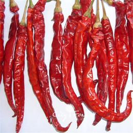 peperoni di bonsai Sconti Fragrante Hot Pepper Semi di ortaggi 100 Pz / lotto Non-OGM Easy-growing Giardino domestico di DIY Bonsai Heirloom Contenitore di verdure Balcone