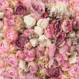 Wholesale Baby Shooting - White Pink Roses Photography Backdrops Children Kids Romantic Flower Wall Backdrop Wedding Newborn Baby Photo Shoot Props