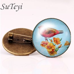 Wholesale Vintage Woman animal brooch Glass cabochon dome art picture birds brooches pins for Suit Sweater carves Animal Jewelry